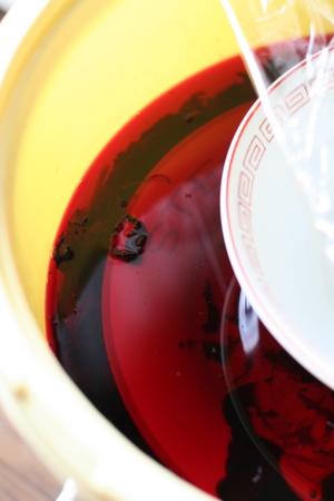 カビを処理して赤紫蘇を入れました。無事元気!