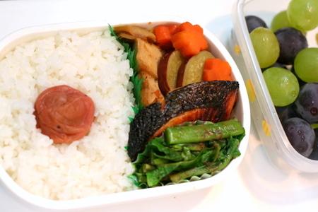 鮭と煮物のお弁当